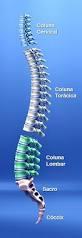 Ortopedista Especialista em Coluna Preço no Jockey Club - Clínica Ortopédica de Tratamento de Ombro e Joelho