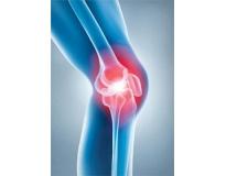 onde encontrar ortopedista especialista em joelho no Jardim Guilhermina