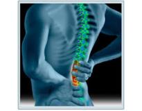 ortopedia especialista em coluna na Bairro Jardim